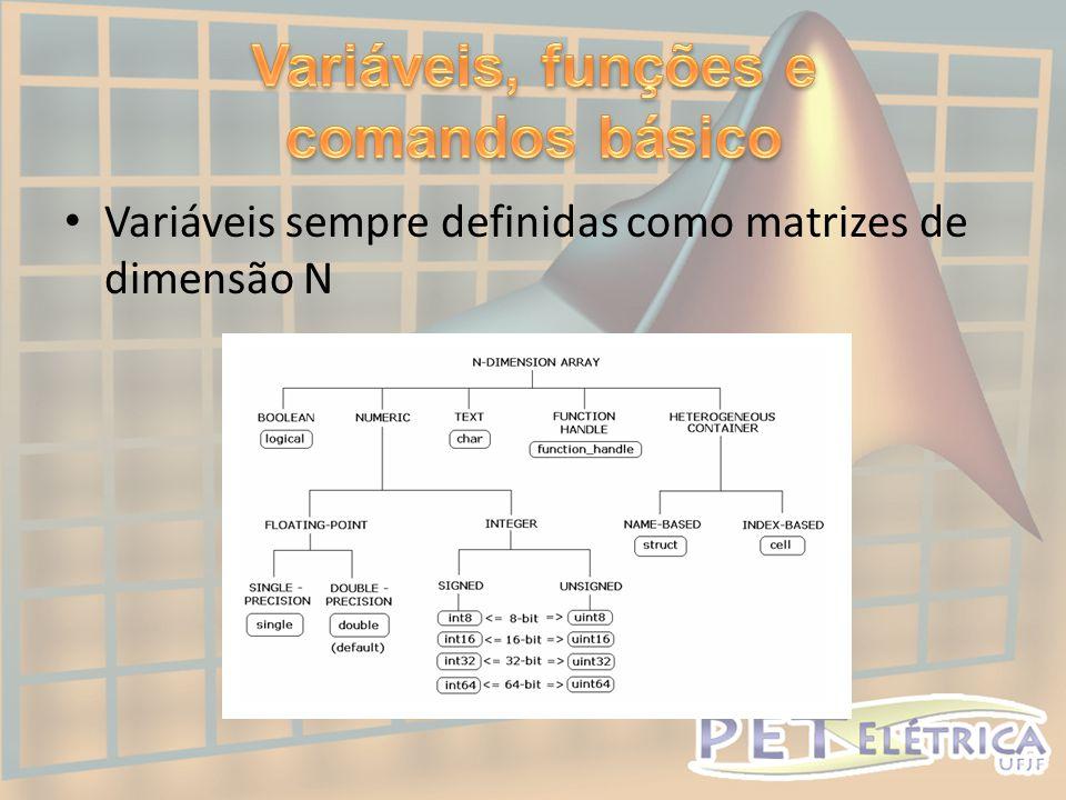 Variáveis, funções e comandos básico