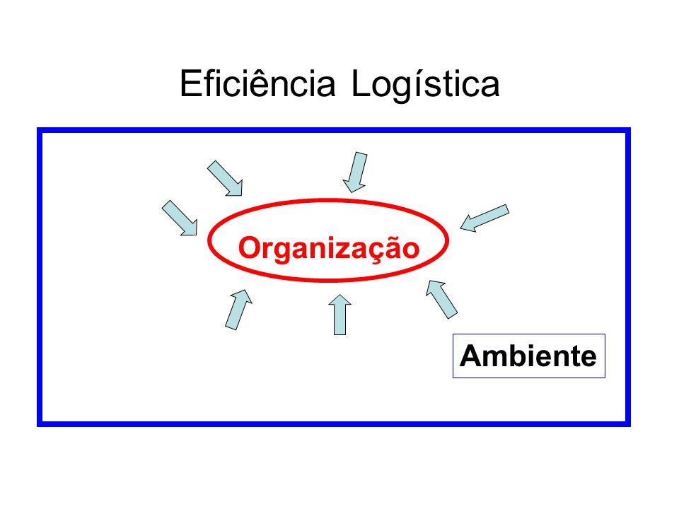 Eficiência Logística Organização Ambiente