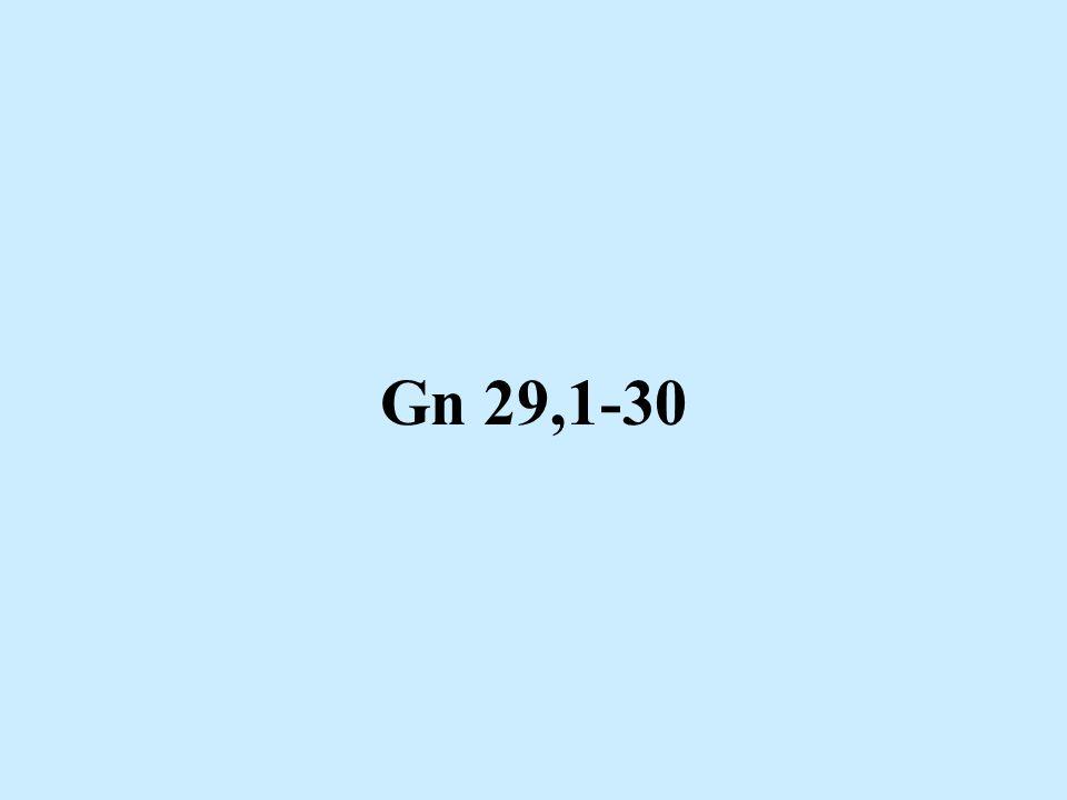 Gn 29,1-30