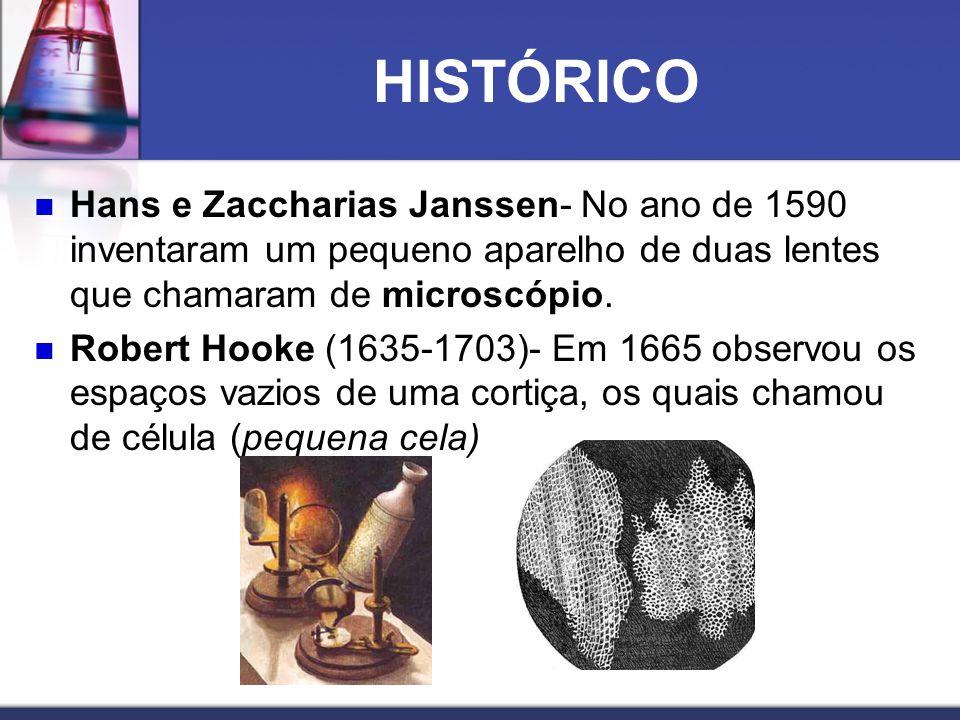 HISTÓRICO Hans e Zaccharias Janssen- No ano de 1590 inventaram um pequeno aparelho de duas lentes que chamaram de microscópio.