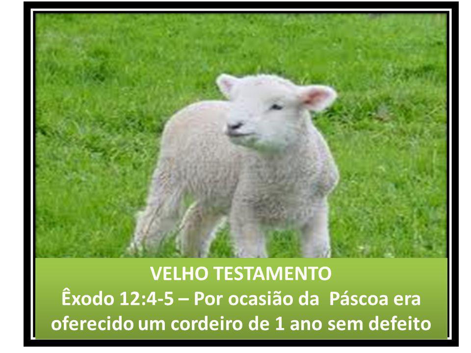 VELHO TESTAMENTO Êxodo 12:4-5 – Por ocasião da Páscoa era oferecido um cordeiro de 1 ano sem defeito.