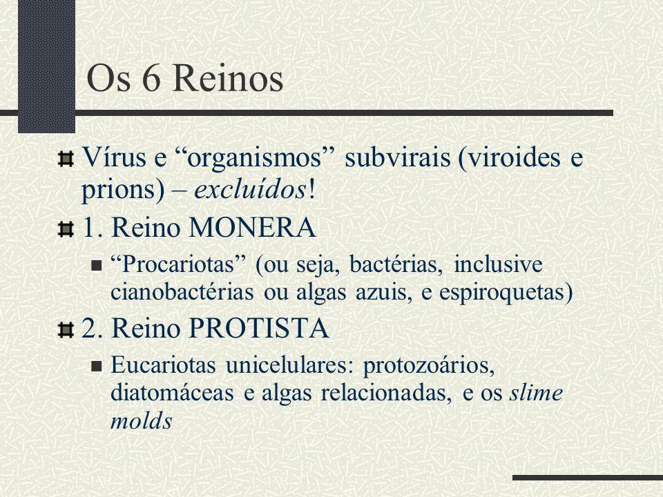 Os 6 Reinos Vírus e organismos subvirais (viroides e prions) – excluídos! 1. Reino MONERA.