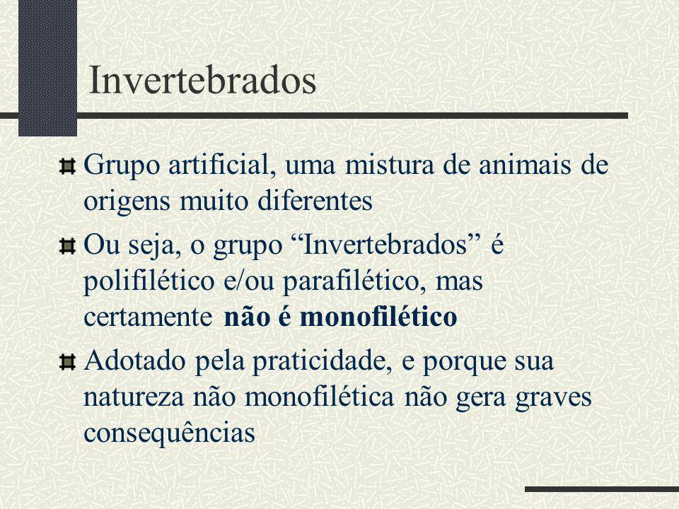 Invertebrados Grupo artificial, uma mistura de animais de origens muito diferentes.