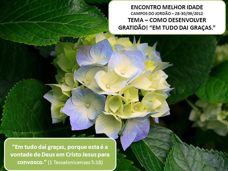 ENCONTRO MELHOR IDADE CAMPOS DO JORDÃO – 28-30/09/2012 TEMA – COMO DESENVOLVER GRATIDÃO! EM TUDO DAI GRAÇAS.