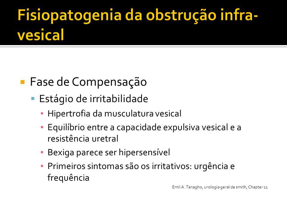 Fisiopatogenia da obstrução infra-vesical