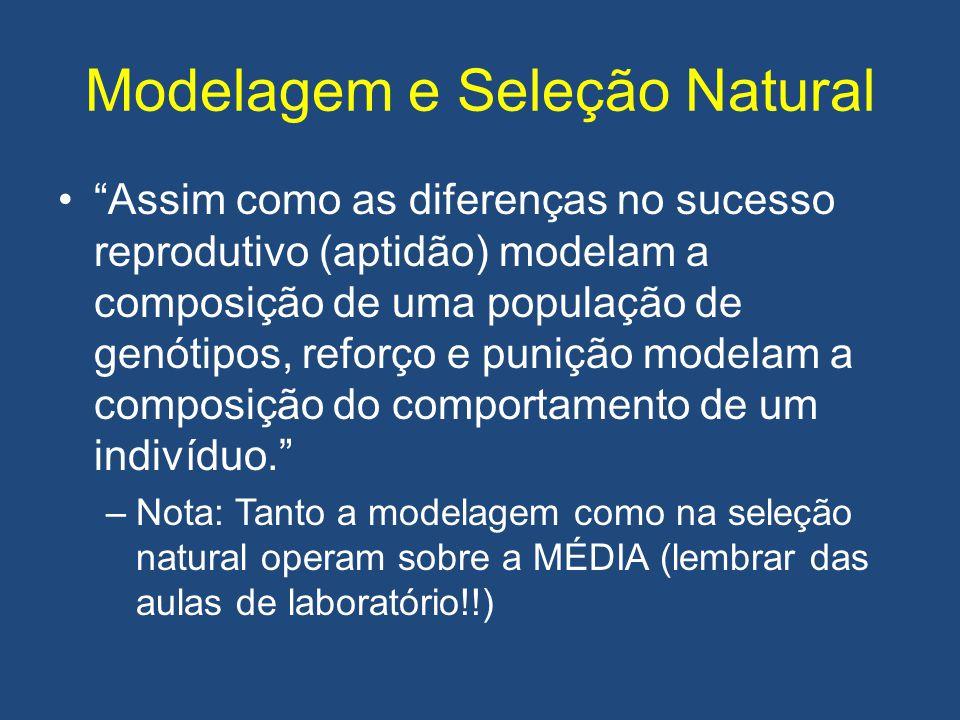 Modelagem e Seleção Natural