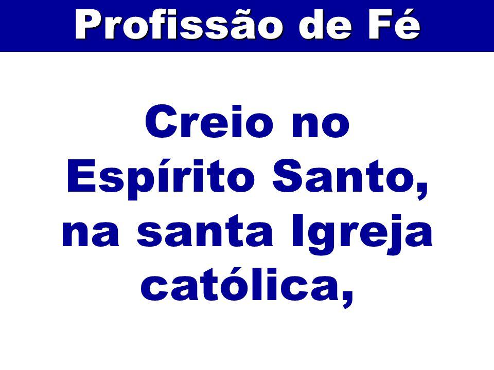 na santa Igreja católica,