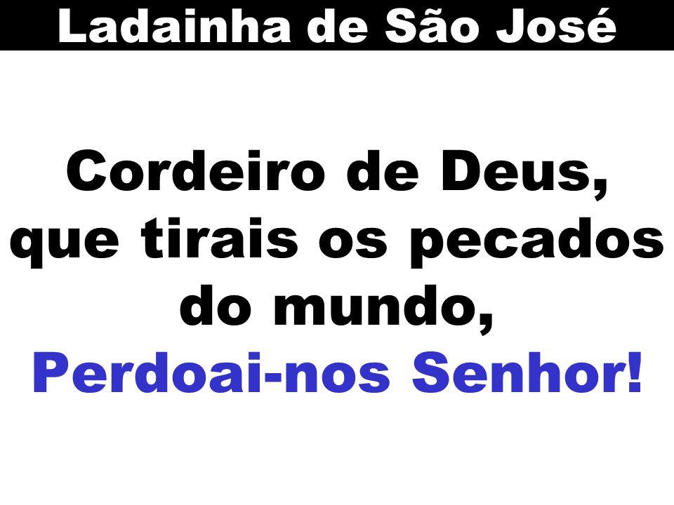 Cordeiro de Deus, que tirais os pecados do mundo, Perdoai-nos Senhor!