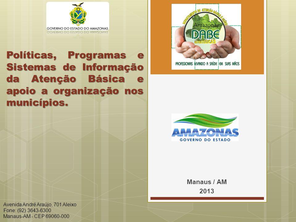 Políticas, Programas e Sistemas de Informação da Atenção Básica e apoio a organização nos municípios.
