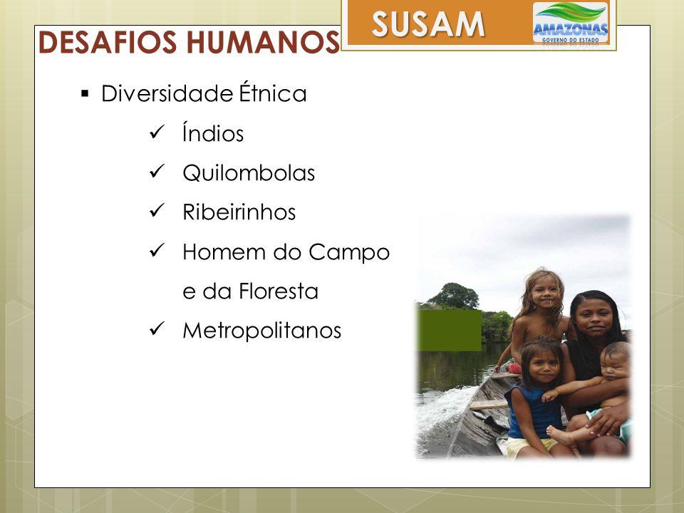 SUSAM DESAFIOS HUMANOS Diversidade Étnica Índios Quilombolas