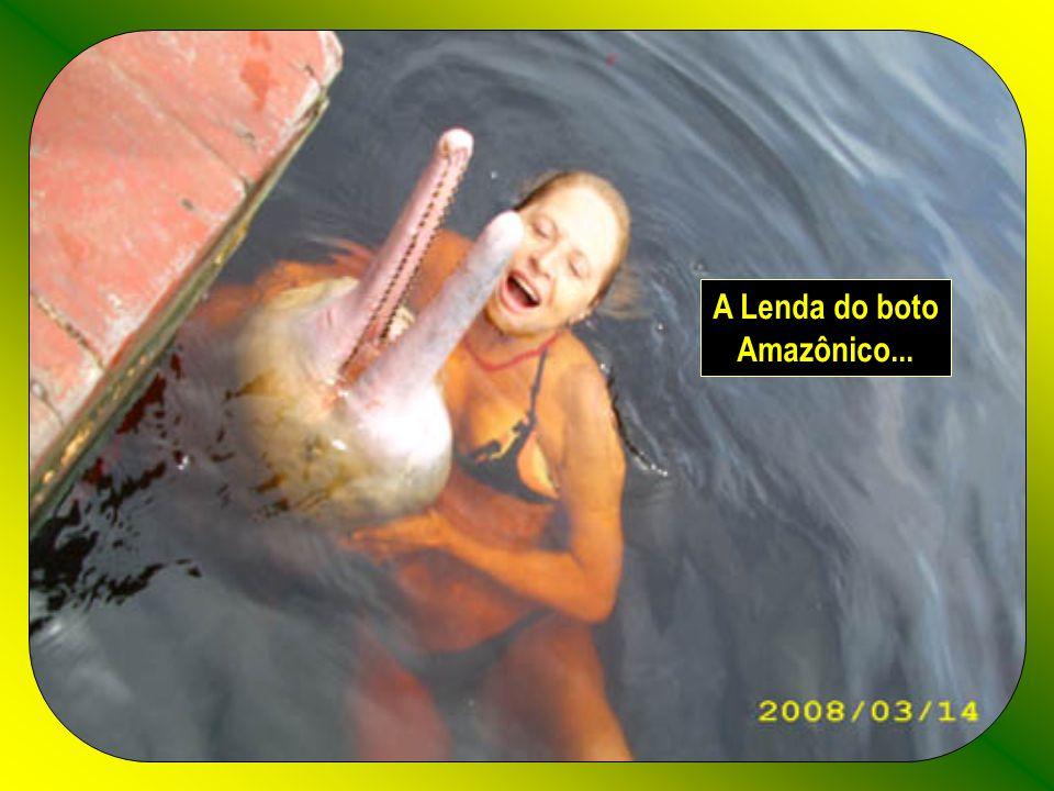 A Lenda do boto Amazônico...