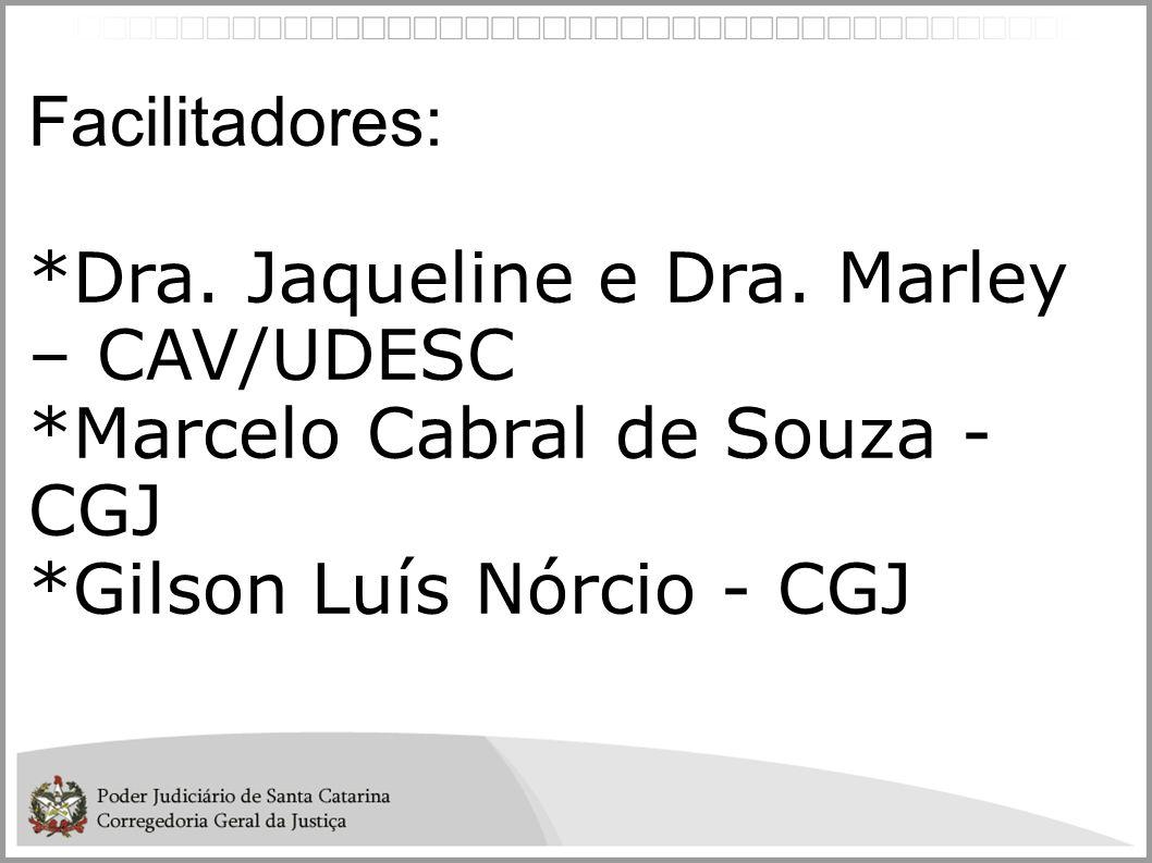Facilitadores: *Dra. Jaqueline e Dra. Marley – CAV/UDESC.