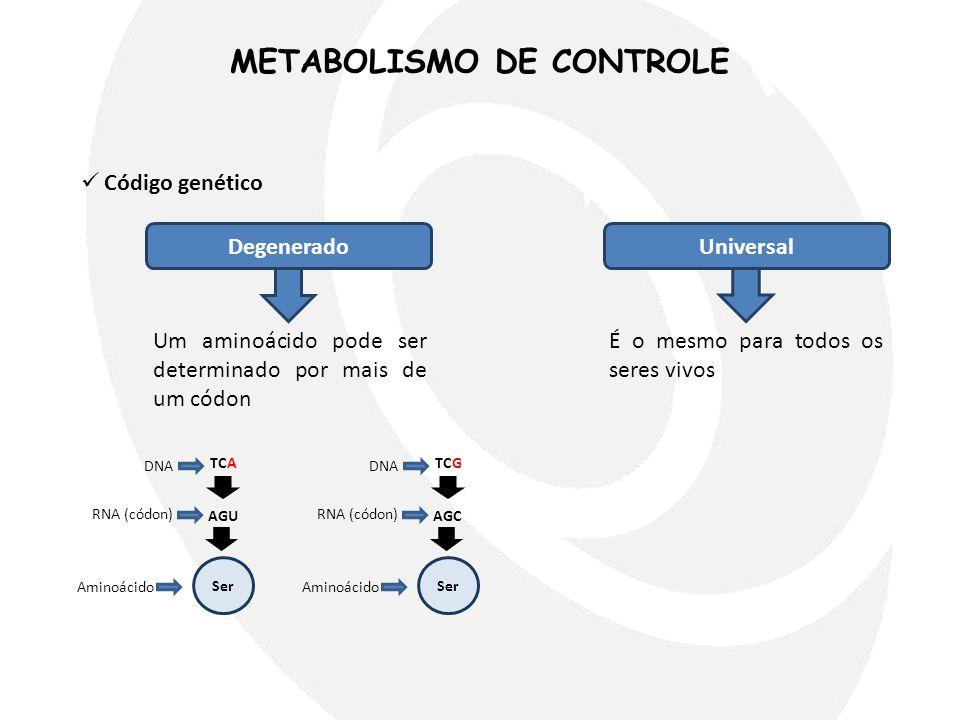 METABOLISMO DE CONTROLE