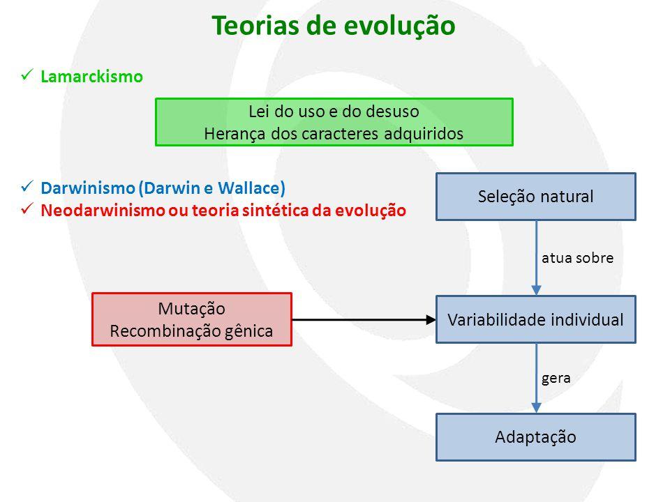 Teorias de evolução Lamarckismo Lei do uso e do desuso