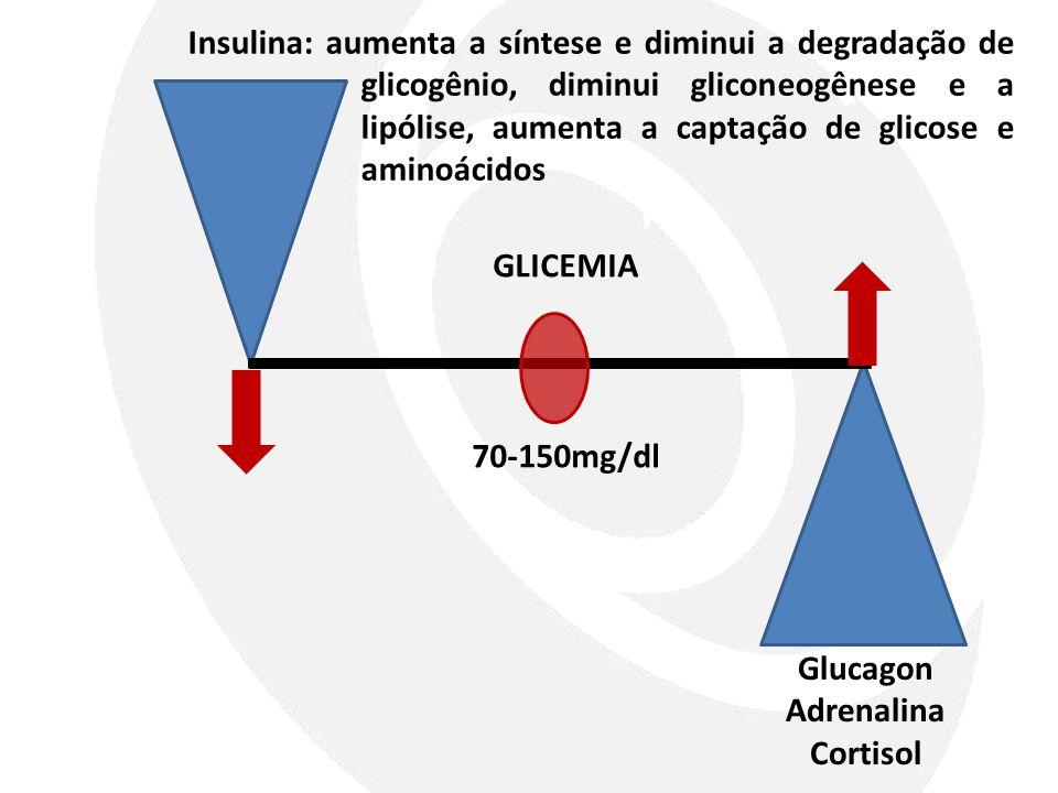 Insulina: aumenta a síntese e diminui a degradação de glicogênio, diminui gliconeogênese e a lipólise, aumenta a captação de glicose e aminoácidos