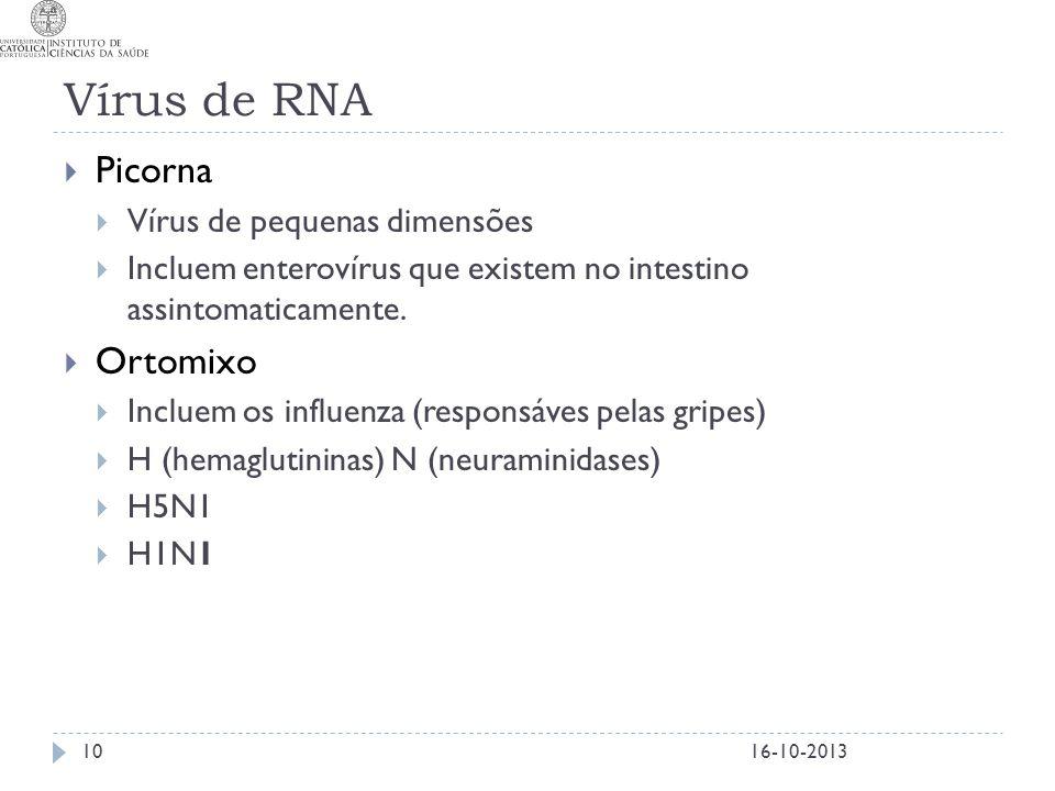 Vírus de RNA Picorna Ortomixo Vírus de pequenas dimensões