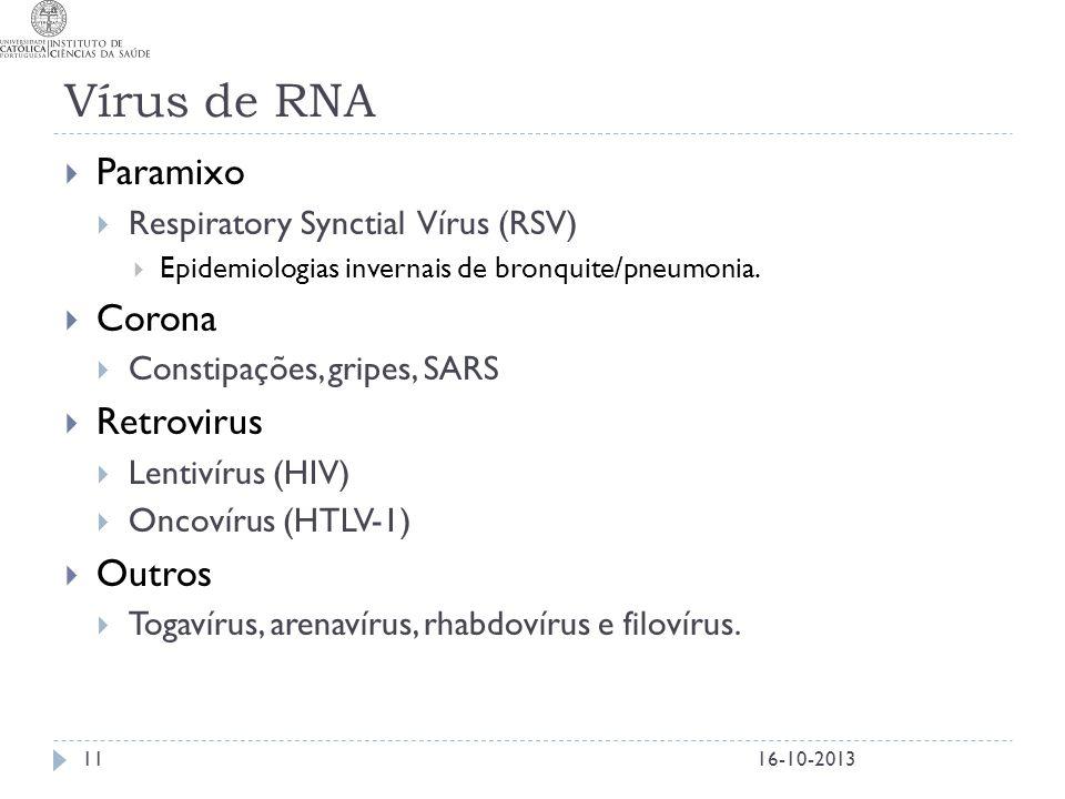 Vírus de RNA Paramixo Corona Retrovirus Outros