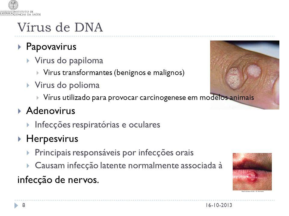 Vírus de DNA Papovavirus Adenovirus Herpesvirus infecção de nervos.