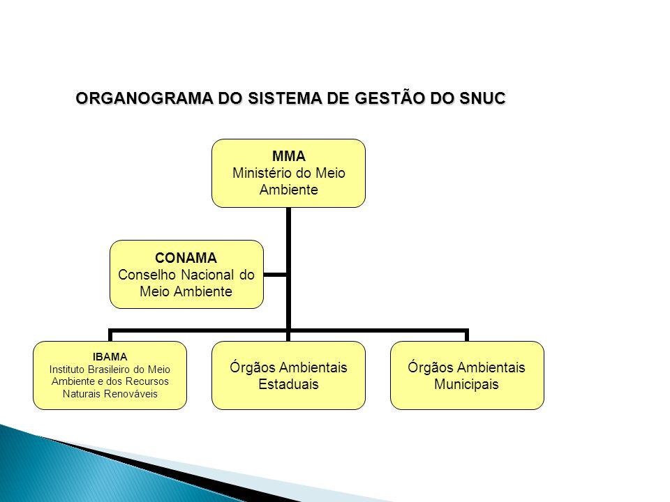 Organograma do Sistema de Gestão do SNUC