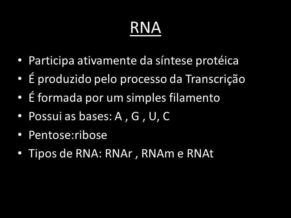 RNA Participa ativamente da síntese protéica