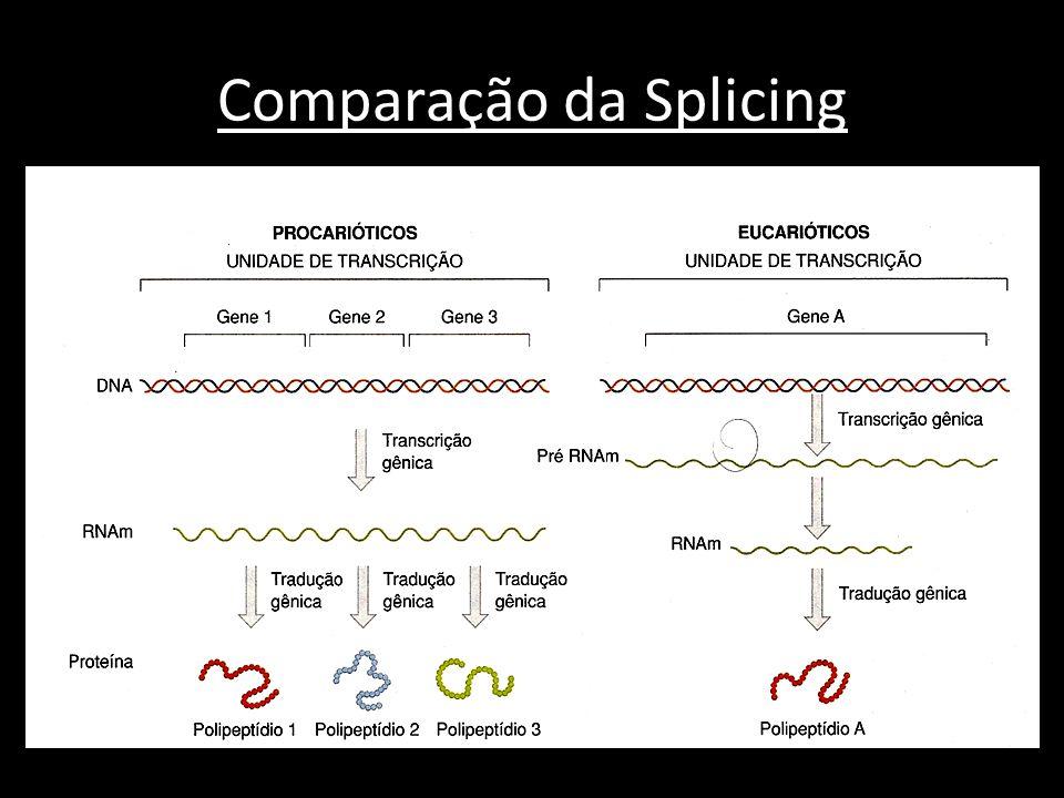 Comparação da Splicing