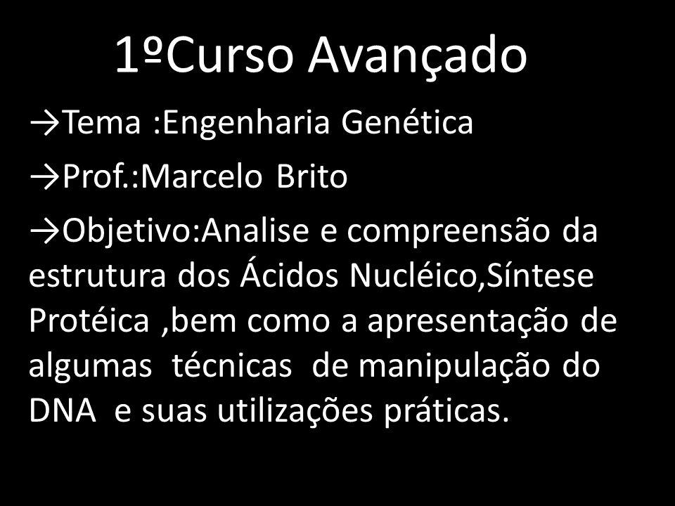 1ºCurso Avançado Tema :Engenharia Genética Prof.:Marcelo Brito