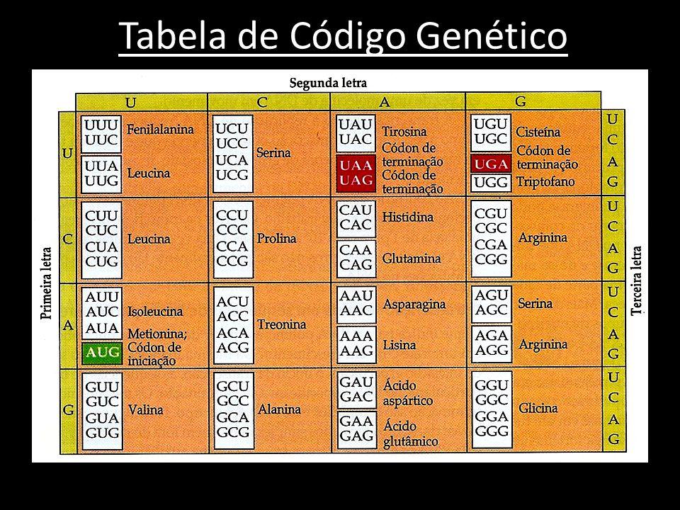 Tabela de Código Genético