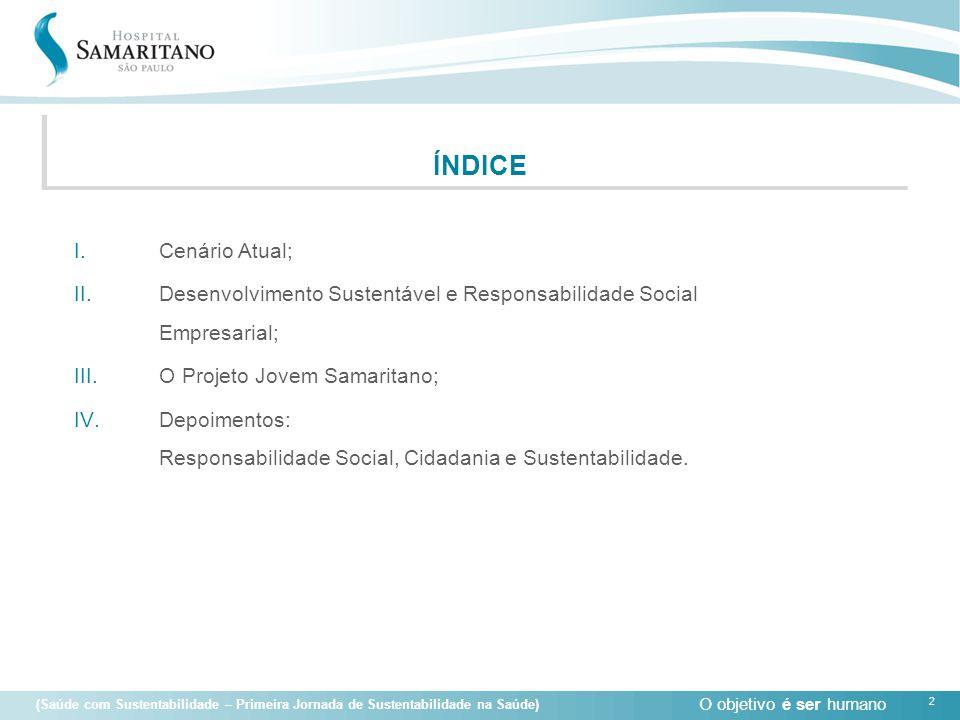 ÍNDICE Cenário Atual; Desenvolvimento Sustentável e Responsabilidade Social Empresarial; O Projeto Jovem Samaritano;