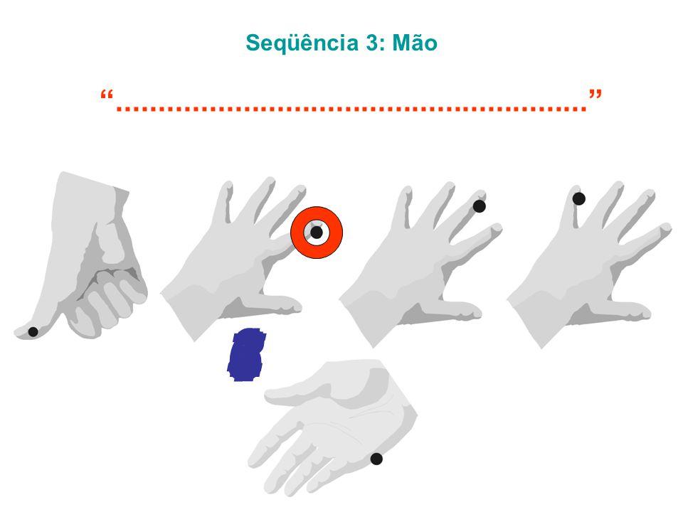 Seqüência 3: Mão ........................................................ 5 6 1 2 4 7 3