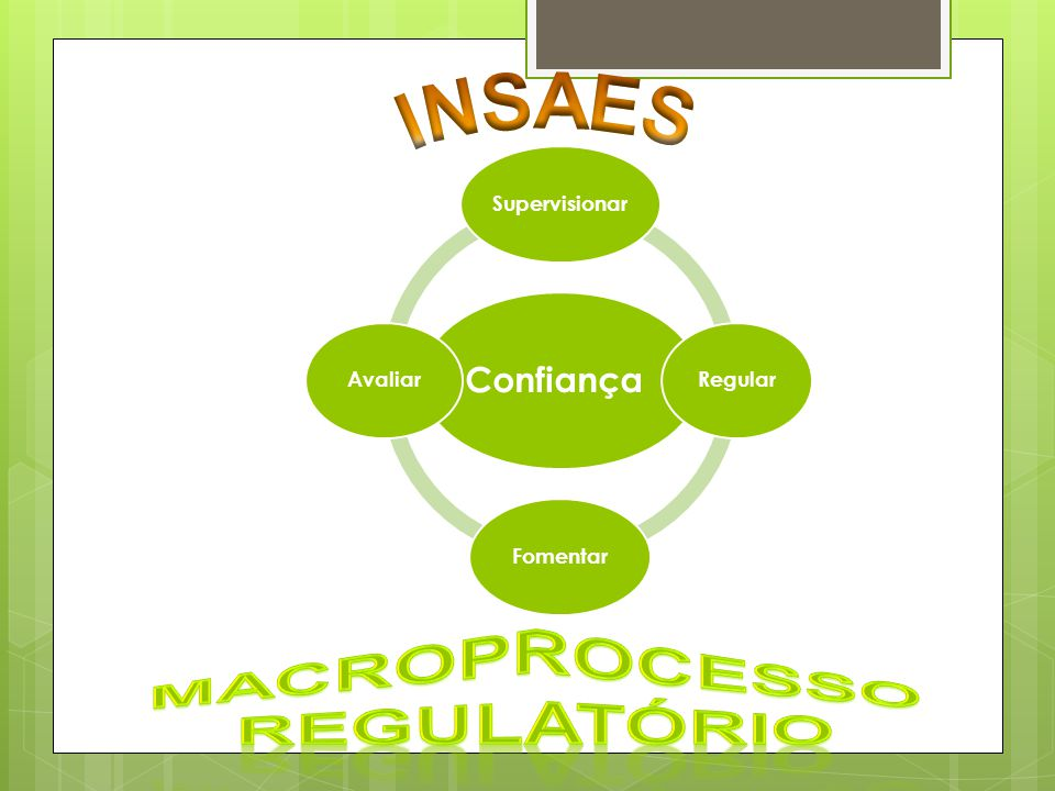 INSAES Macroprocesso Regulatório Confiança Supervisionar Regular
