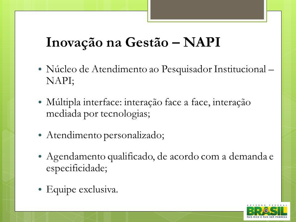 Inovação na Gestão – NAPI