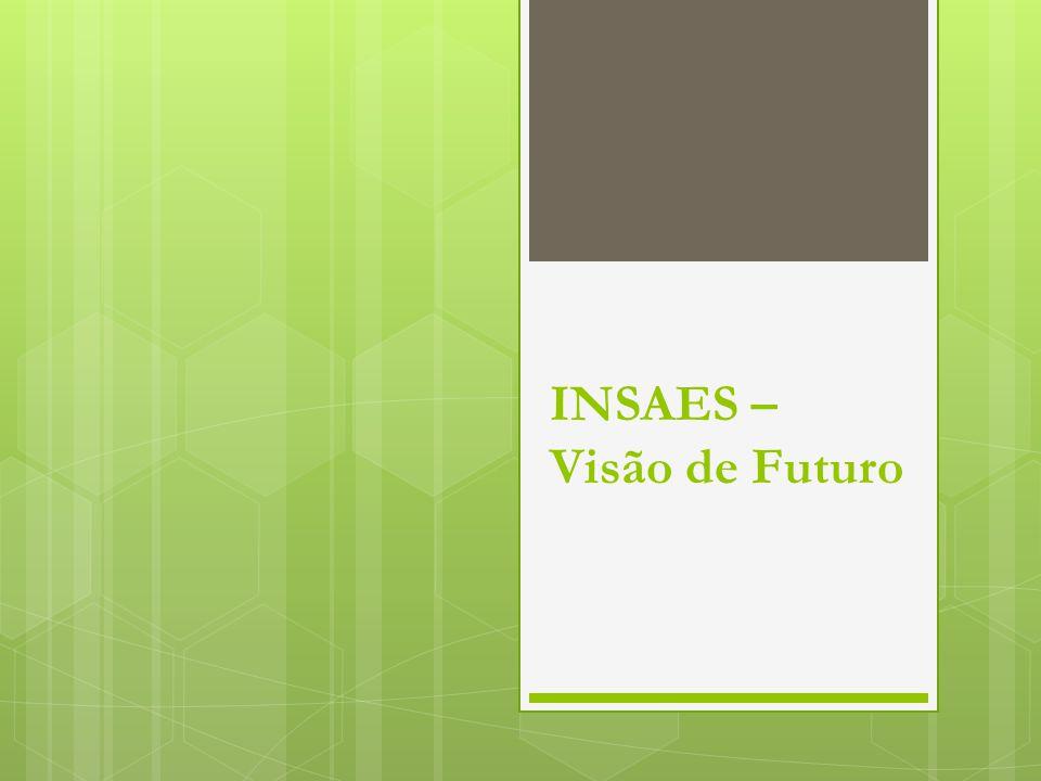 INSAES – Visão de Futuro
