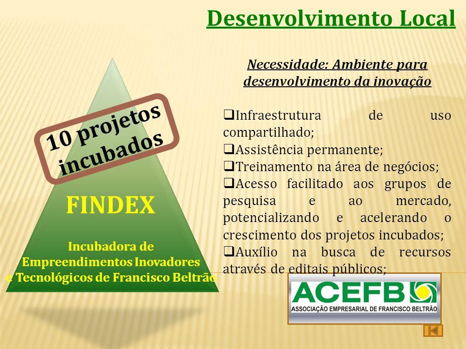 FINDEX Desenvolvimento Local 10 projetos incubados