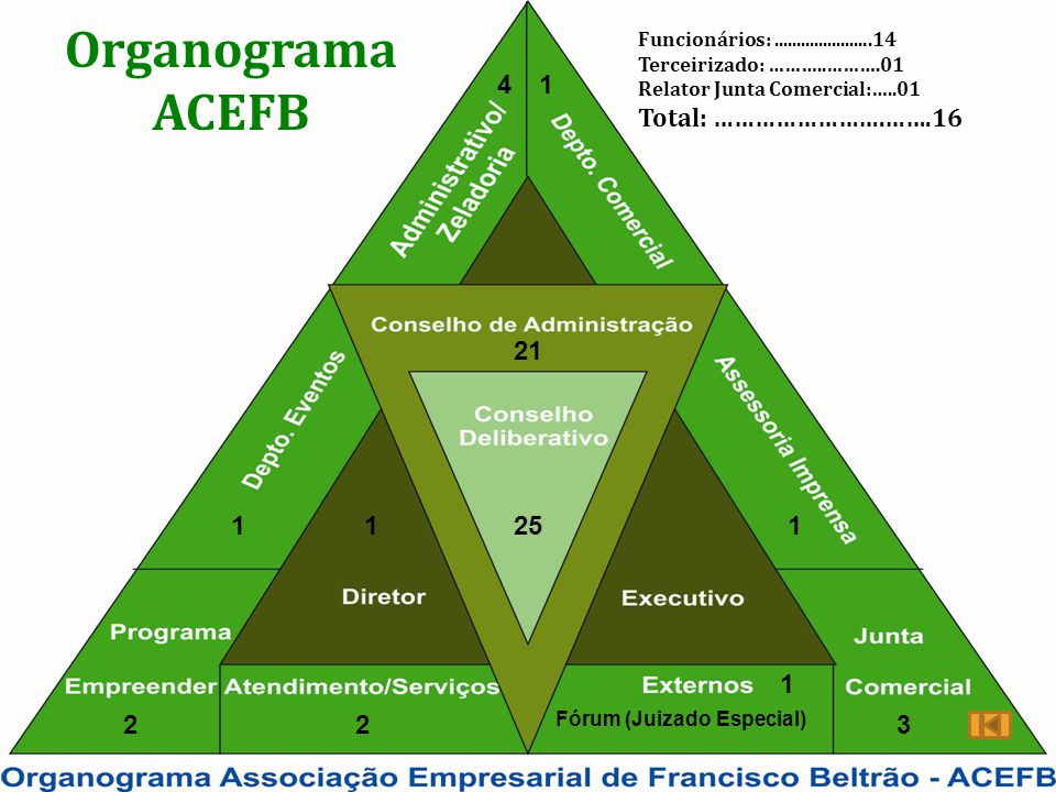 Organograma ACEFB Total: …………………….…….16 4 1 21 1 1 25 1 1 2 2 3