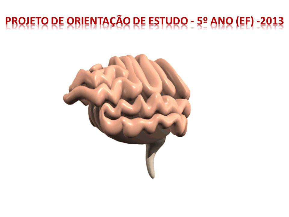 Projeto de Orientação de Estudo - 5º ano (EF) -2013