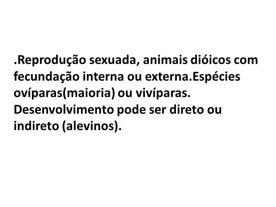 Reprodução sexuada, animais dióicos com fecundação interna ou externa