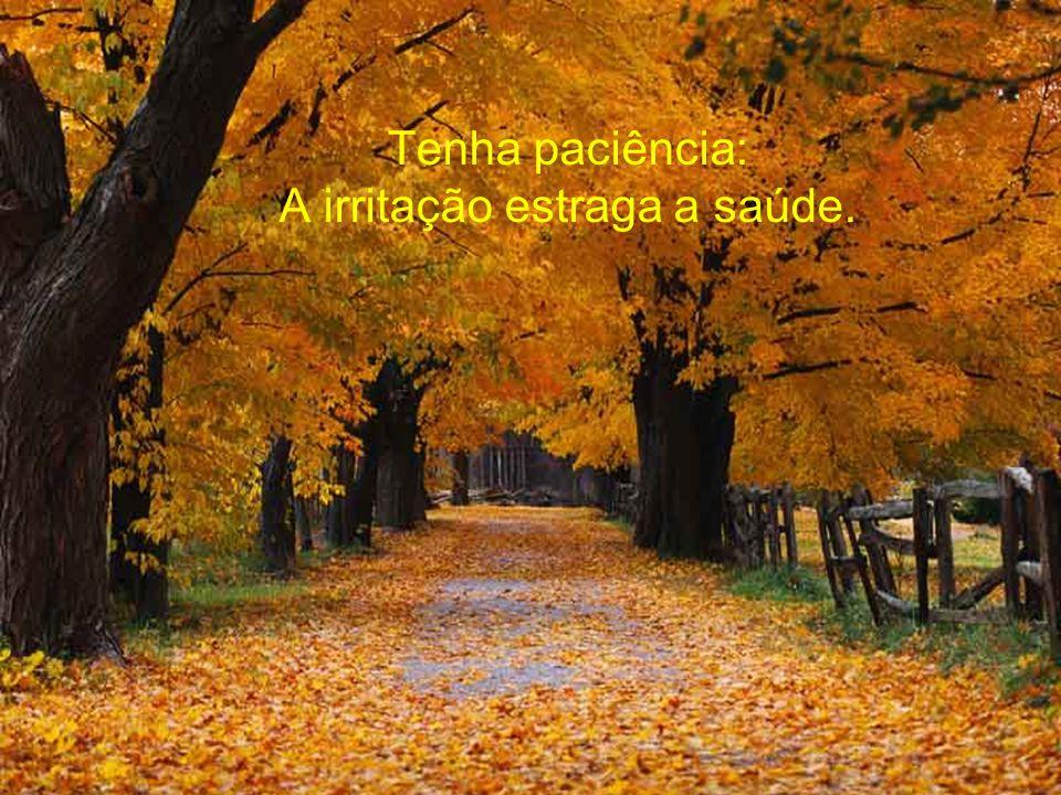 Tenha paciência: A irritação estraga a saúde.