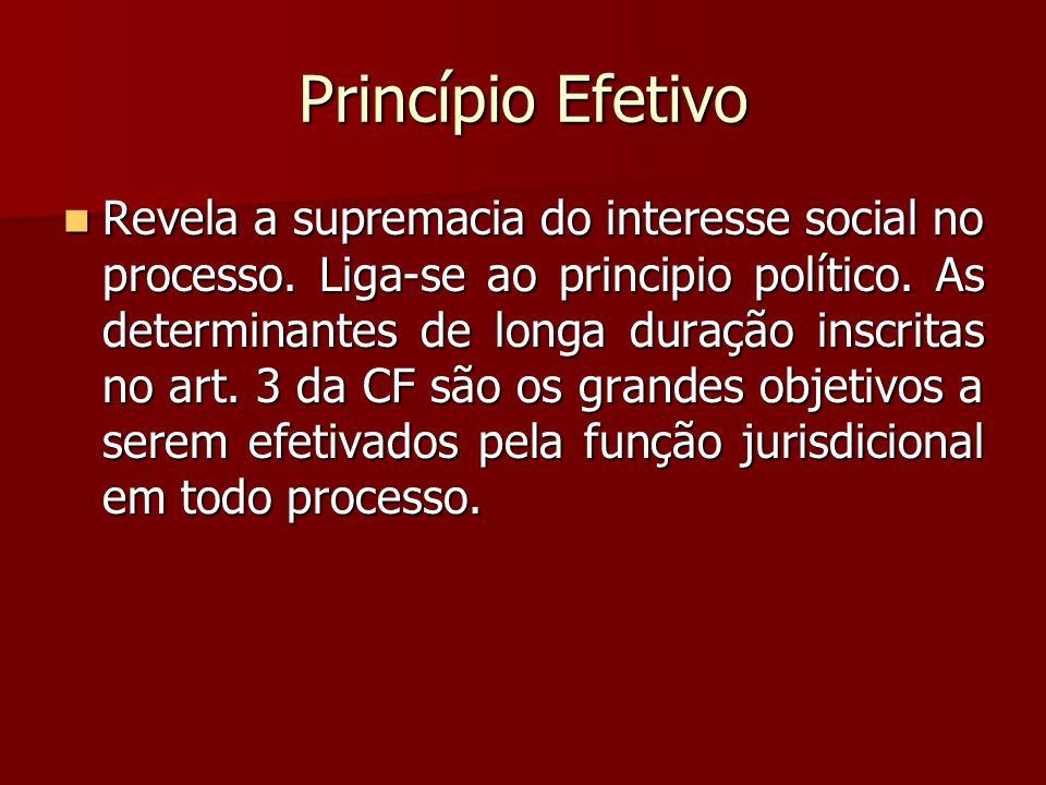 Princípio Efetivo