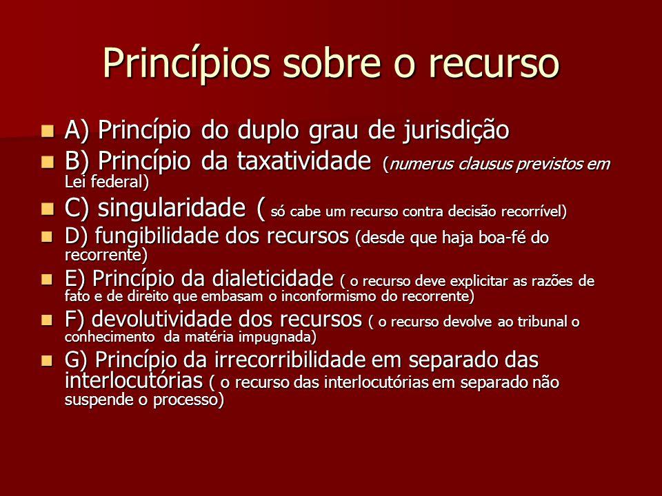 Princípios sobre o recurso