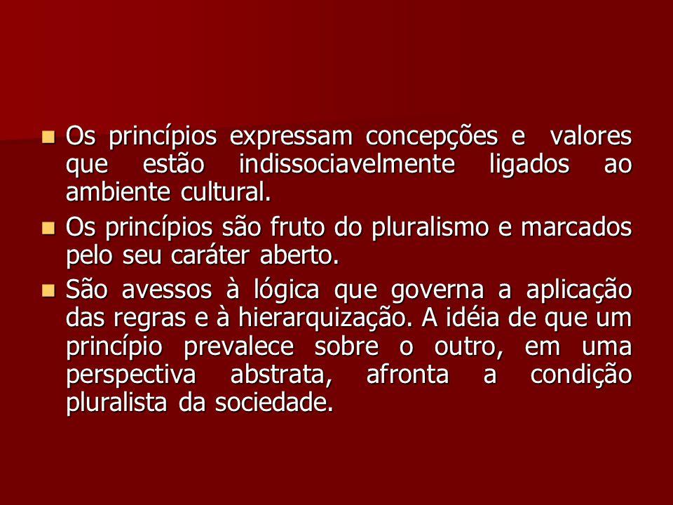 Os princípios expressam concepções e valores que estão indissociavelmente ligados ao ambiente cultural.
