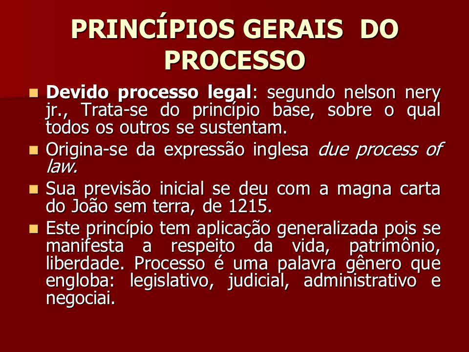 PRINCÍPIOS GERAIS DO PROCESSO
