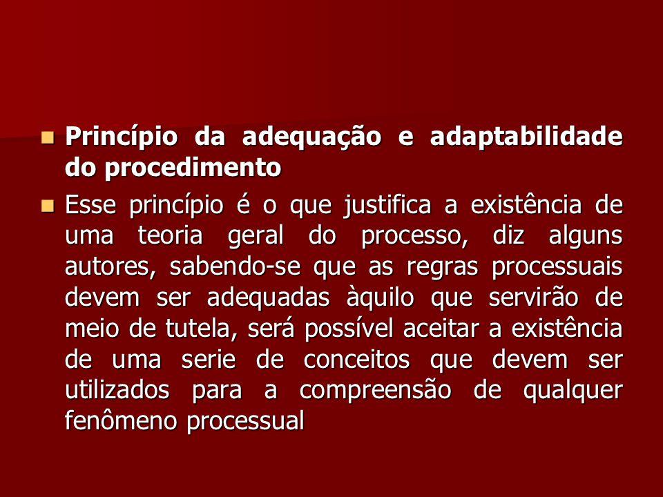 Princípio da adequação e adaptabilidade do procedimento