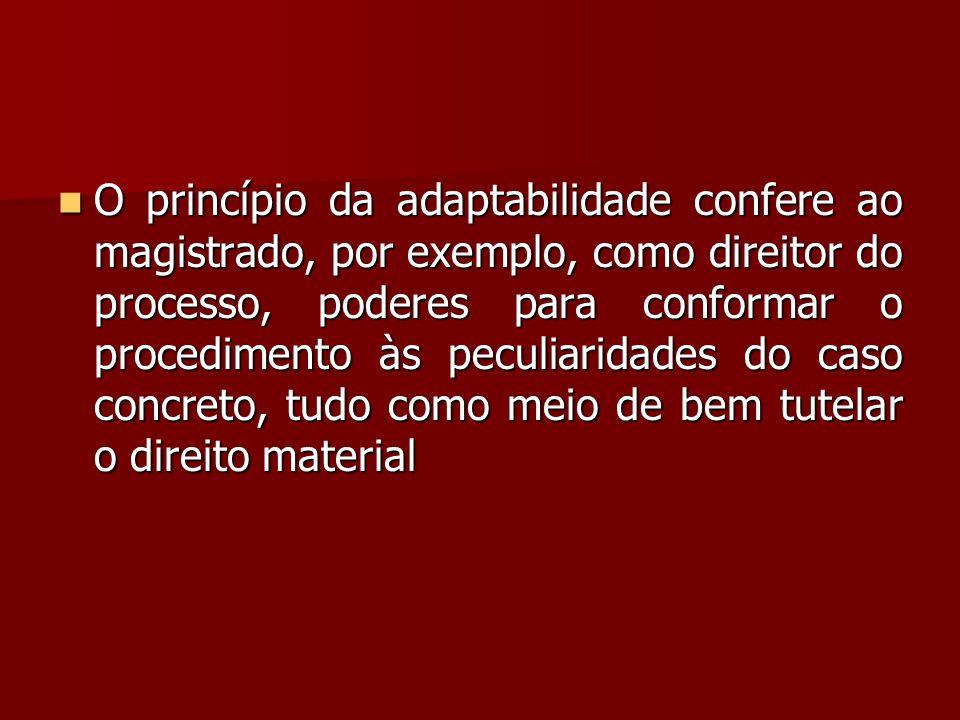 O princípio da adaptabilidade confere ao magistrado, por exemplo, como direitor do processo, poderes para conformar o procedimento às peculiaridades do caso concreto, tudo como meio de bem tutelar o direito material