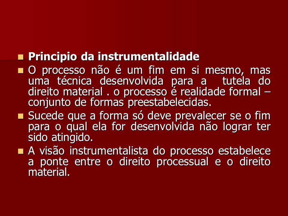 Principio da instrumentalidade