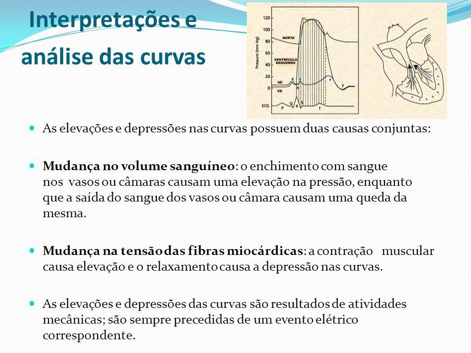 Interpretações e análise das curvas