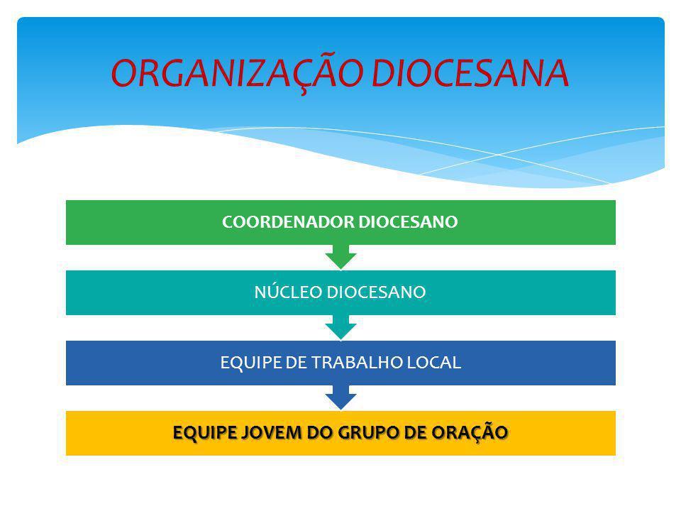 ORGANIZAÇÃO DIOCESANA