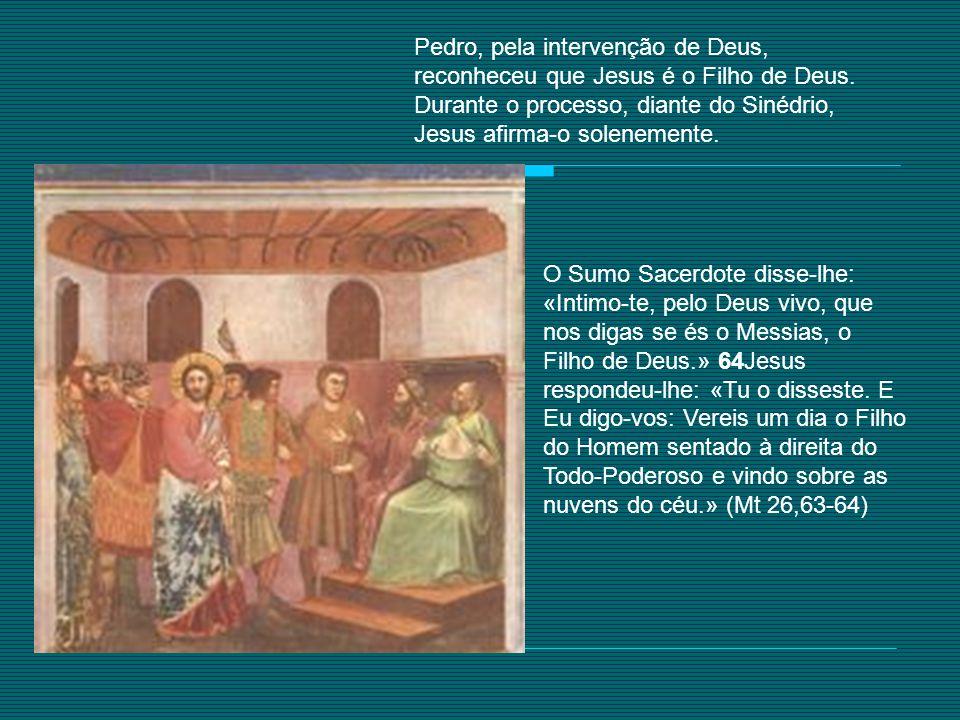 Pedro, pela intervenção de Deus, reconheceu que Jesus é o Filho de Deus. Durante o processo, diante do Sinédrio, Jesus afirma-o solenemente.