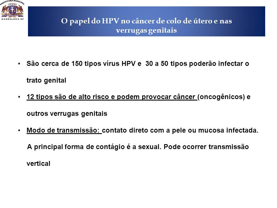 O papel do HPV no câncer de colo de útero e nas verrugas genitais
