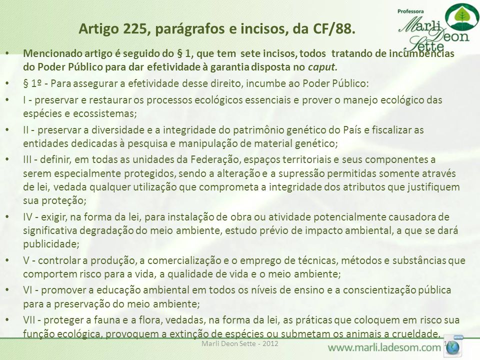 Artigo 225, parágrafos e incisos, da CF/88.