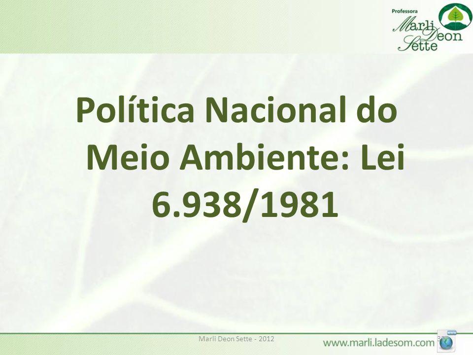 Política Nacional do Meio Ambiente: Lei 6.938/1981
